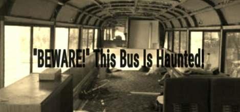 Bus5510216307387428345_1857498710_o